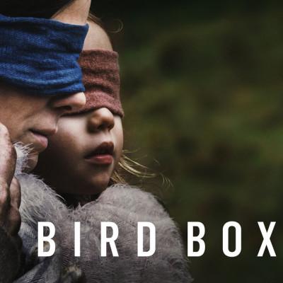 «Bird box» встановила рекорд каналу Netflix