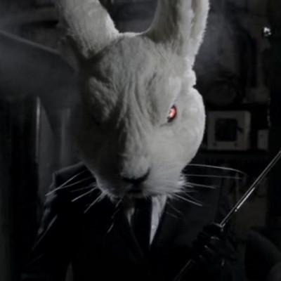 Run, Human, Run! Чому кролики – це морок і безумство